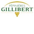 Pépinières Gillibert - PLANTS AND VINE NURSERY