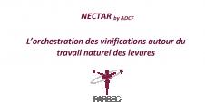 Nectar ACDF - Parsec