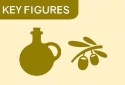 Chiffres clés olive 2019